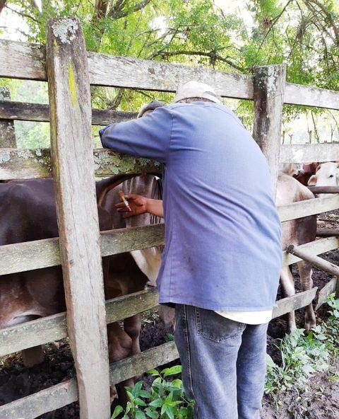 Se realiza campaña de vacunación en la localidad de Tlatzonco